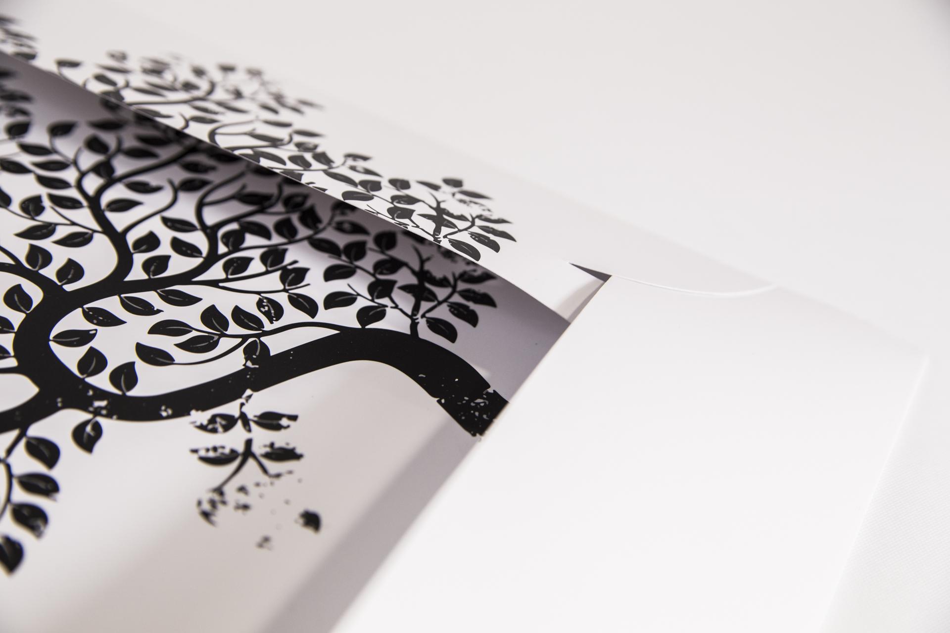 carpeta de presentación con solapa para hojas